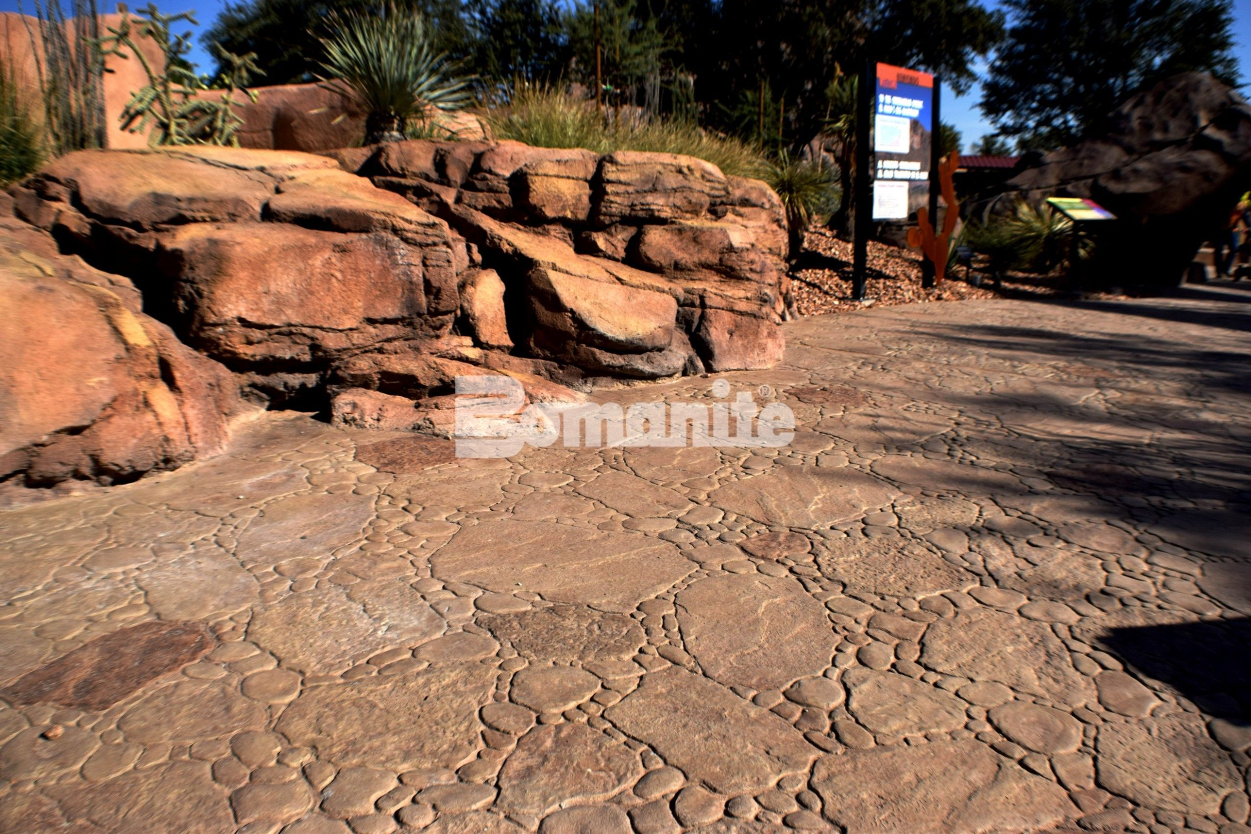 View of the path and boulders created using Bomanite Imprint Systems to create a native habitat at the El Paso Zoo Chihuahuan Desert Exhibit installed by Bomanite Artistic Concrete & Pools.